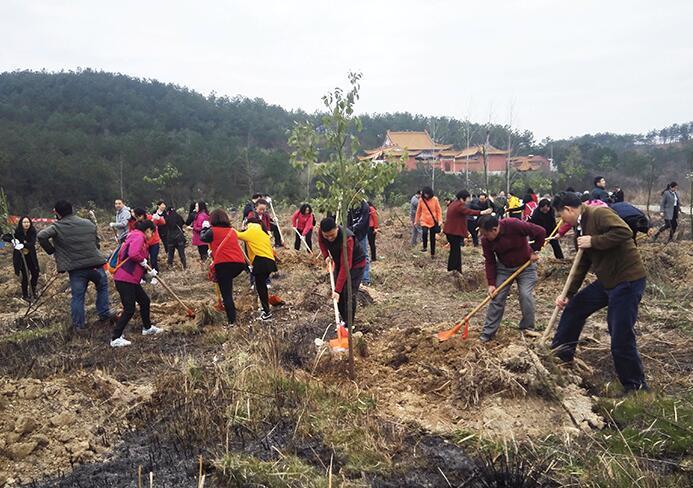 省政协机关组织干部职工赴红安开展义务植树活动