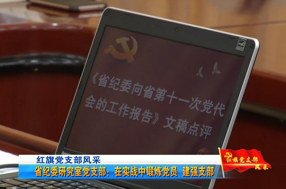 红旗党支部风采——省纪委研究室党支部:在实战中锻炼党员 建强支部